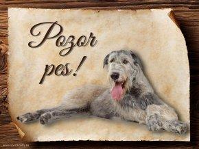 Cedulka Irský vlkodav - Pozor pes/CP096