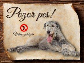 Cedulka Irský vlkodav - Pozor pes zákaz/CP099