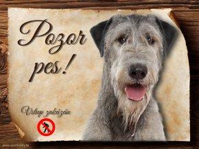 Cedulka Irský vlkodav II - Pozor pes zákaz/CP500