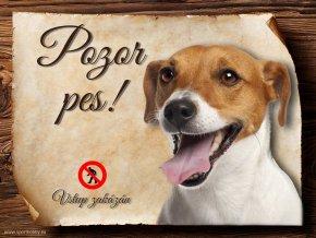 Cedulka Jack Russell teriér - Pozor pes zákaz/CP070