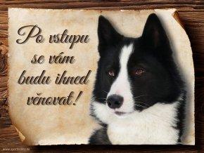 Cedulka Karelský medvědí pes - Po vstupu .../CP140