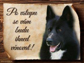 446 Cedulka Karelský medvědí pes II