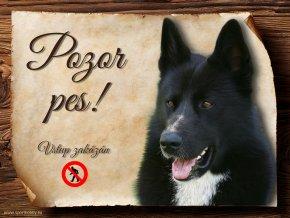 447 Cedulka Karelský medvědí pes II