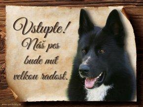 448 Cedulka Karelský medvědí pes II