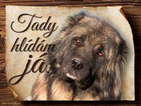 Cedulka Kavkazský pastevecký pes - Tady hlídám já/CP735