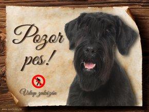 Cedulka Knírač velký - Pozor pes zákaz/CP401
