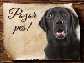 Cedulka Labradorský retrívr - Pozor pes/CP308