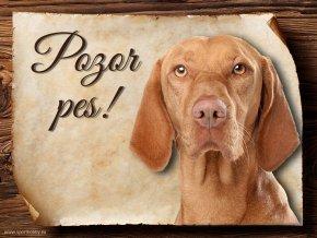 Cedulka Maďarský ohař - Pozor pes/CP246