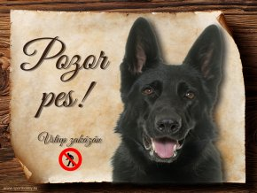 Cedulka Německý ovčák III - Pozor pes zákaz/CP573