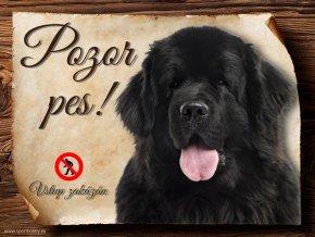 Cedulka Novofunlandský pes - Pozor pes zákaz/CP040