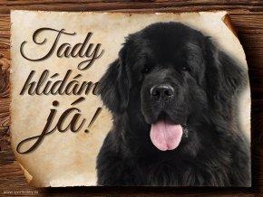 Cedulka Novofundlandský pes - Tady hlídám já/CP036
