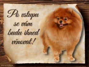 Cedulka Pomeranian - Po vstupu .../CP436