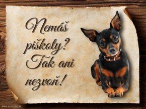 Cedulka Pražský krysařík - Piškoty/CP063
