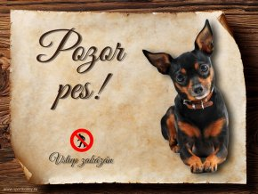 Cedulka Pražský krysařík - Pozor pes zákaz/CP065