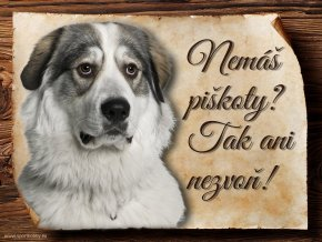 Cedulka Pyrenejský horský pes - Piškoty/CP048