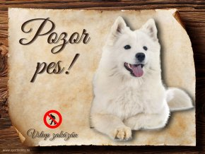 Cedulka Samojed - Pozor pes zákaz/CP159
