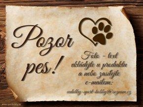 Cedulka Vlastní pes - Pozor pes/CP1002