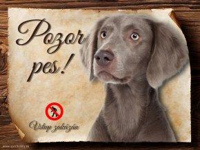 Cedulka Výmarský ohař - Pozor pes zákaz/CP045