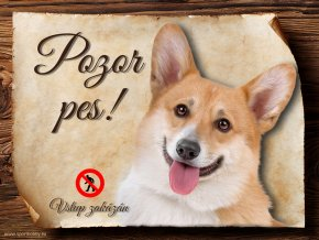 Cedulka Welsh Corgi Pembroke - Pozor pes zákaz/CP230