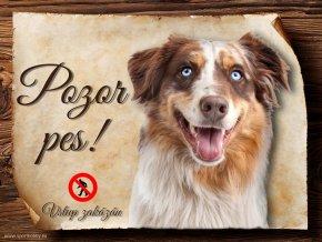 Cedulka Australský ovčák - Pozor pes zákaz/CP189