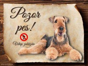 Cedulka Airedalský Terrier - Pozor pes zákaz/CP111