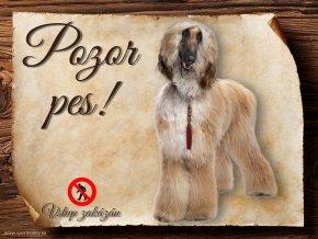 Cedulka Afghánský chrt - Pozor pes zákaz/CP010