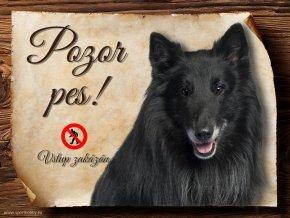 Cedulka Belgický ovčák Groenendael - Pozor pes zákaz/CP371