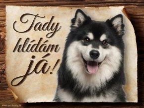 692 Cedulka Finský laponský pes