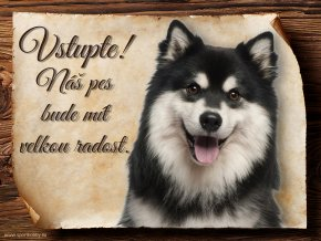 697 Cedulka Finský laponský pes