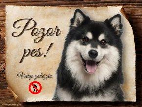 696 Cedulka Finský laponský pes