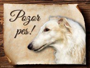 Cedulka Barzoj - Pozor pes/CP132