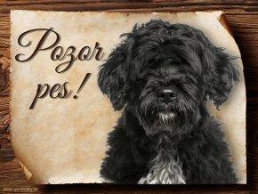 718 Cedulka Portugalský vodní pes