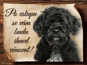 720 Cedulka Portugalský vodní pes