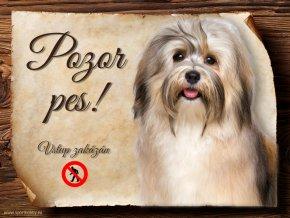 749 Cedulka Havanský psík