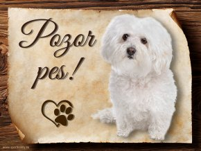 934 Cedulka Boloňský psík