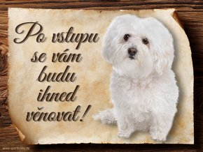 936 Cedulka Boloňský psík