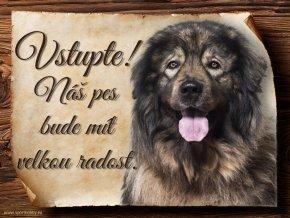 965 Šarplaninský pastevecký pes