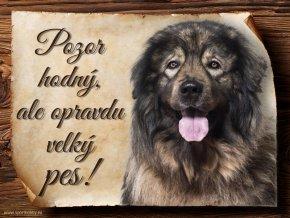 966 Šarplaninský pastevecký pes