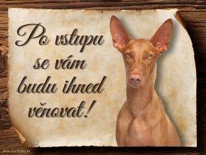 976 Faraonský pes