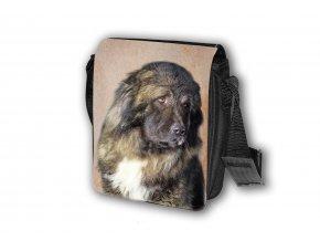T155 Taška Kavkazský pastevecký pes