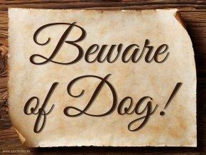 3017 Beware of Dog EN