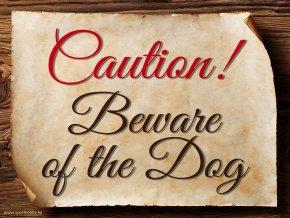 3020 Caution EN