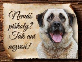 1206 Cedulka Anatolský pastevecký pes