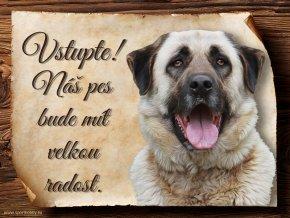 1209 Cedulka Anatolský pastevecký pes