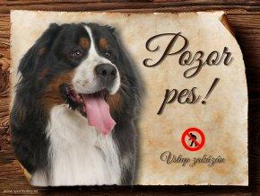 Cedulka Bernský salašnický pes - Pozor pes zákaz/CP060
