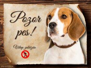 Cedulka Bígl - Pozor pes zákaz/CP621