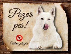 Cedulka Bílý švýcarský ovčák - Pozor pes zákaz/CP075