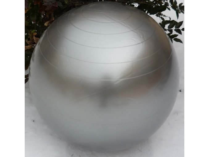 Gymball 65 cm