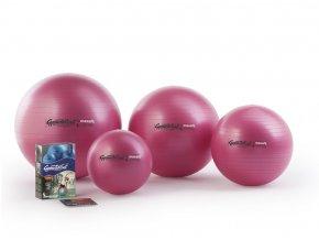 Gymnastik Ball Maxafe 53 cm