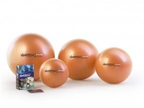 LEDRAGOMMA Gymnastik Ball MAXAFE 75 cm